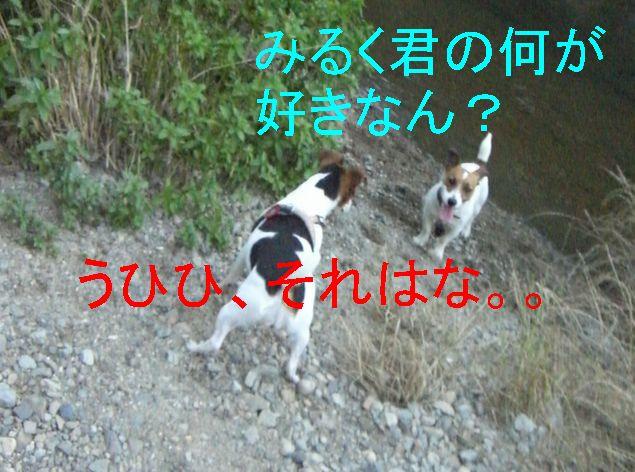 f0053952_1421366.jpg