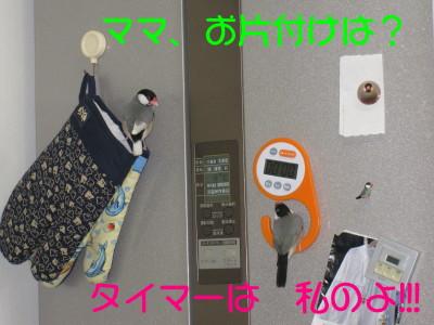 b0158061_214263.jpg