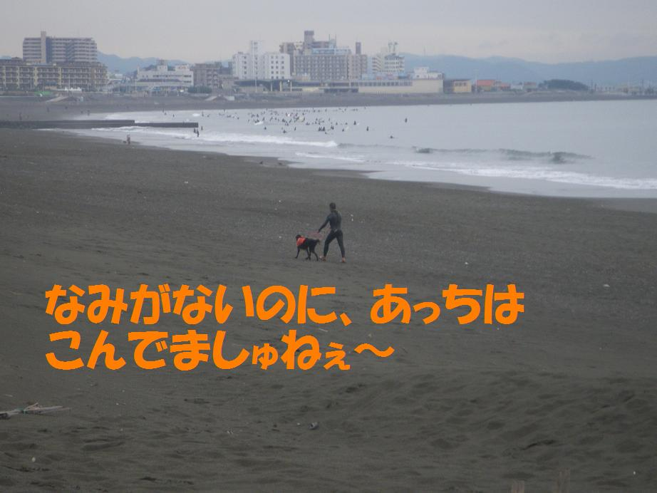 a0104464_16285754.jpg