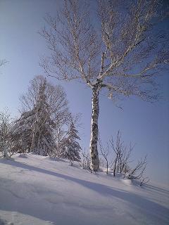 札幌国際スキー場_c0151965_14192986.jpg