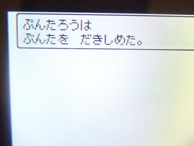 d0084677_20101223.jpg