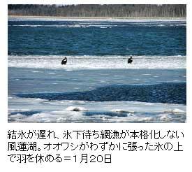 f0083977_2252544.jpg