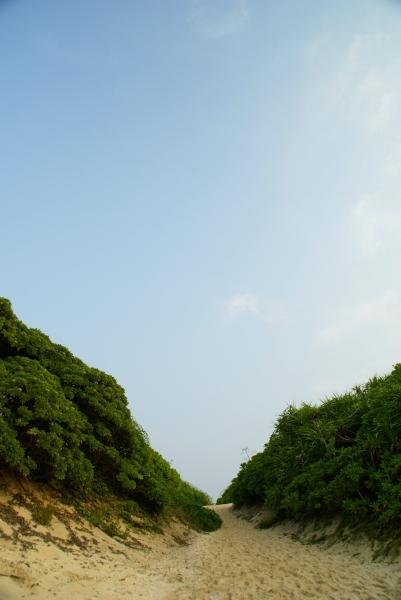 宮古島旅行2008_f0189086_213709.jpg