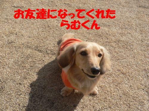 f0178701_1645361.jpg