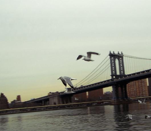 冬のブルックリン・ブリッジ・パークをお散歩_b0007805_1325895.jpg
