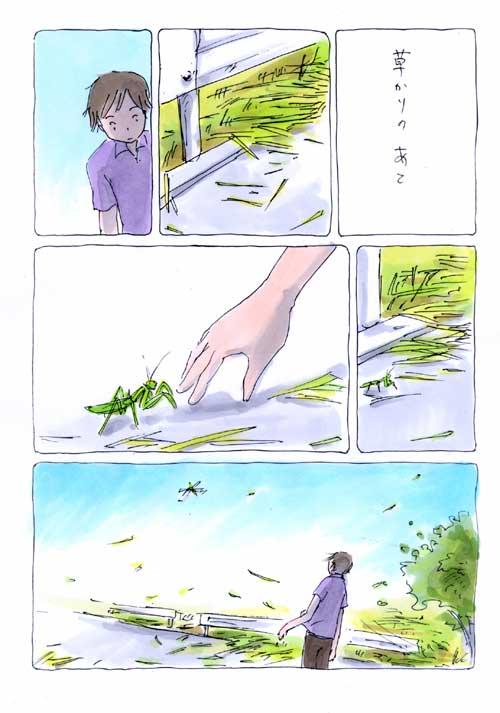 草かりのあと _a0026616_20295860.jpg