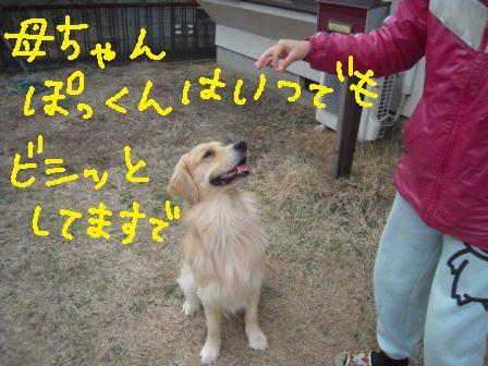 f0176830_17145388.jpg