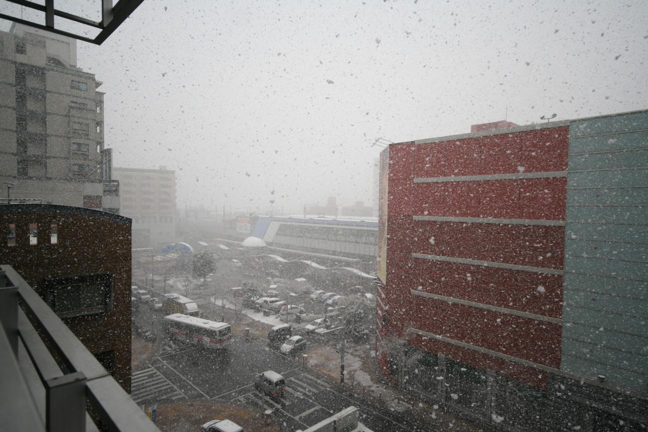 見る見る間に~積雪♪_d0082356_1621509.jpg