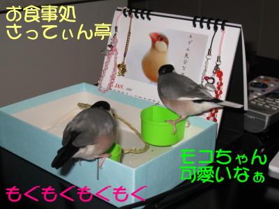 b0158061_2120132.jpg