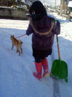 雪かき犬とお殿様_b0123467_1626214.jpg