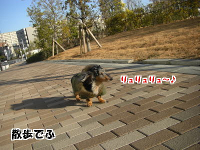 d0020869_17511461.jpg