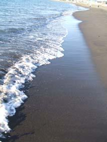 師走の海辺_c0154588_1637935.jpg