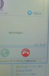 スカイプを使おう_c0052304_138221.jpg