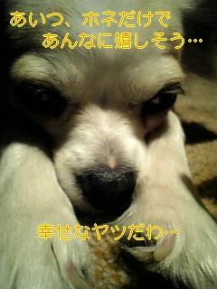 f0148927_17513247.jpg