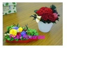 d0151229_23443041.jpg