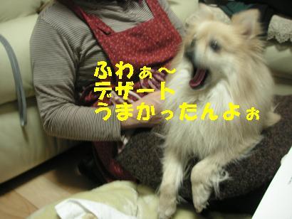 c0179136_3524827.jpg