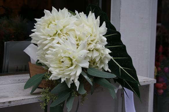 白ダリアにアローカシアの葉のクラッチブーケ&黒ダリアにベージュ系のバラのクラッチブーケ♫_e0149863_1337062.jpg