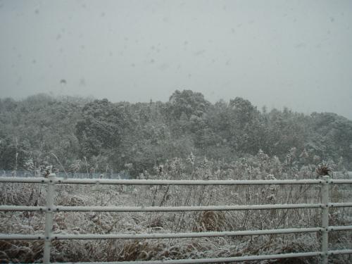 吹雪_a0077071_19125264.jpg