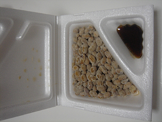天ぷらと納豆_c0025217_11262544.jpg