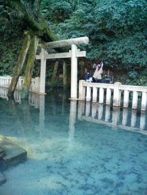鹿島神宮_c0198232_12211313.jpg