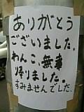 b0018242_2315540.jpg
