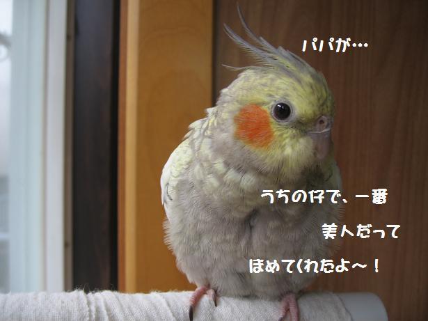 e0027078_16435519.jpg