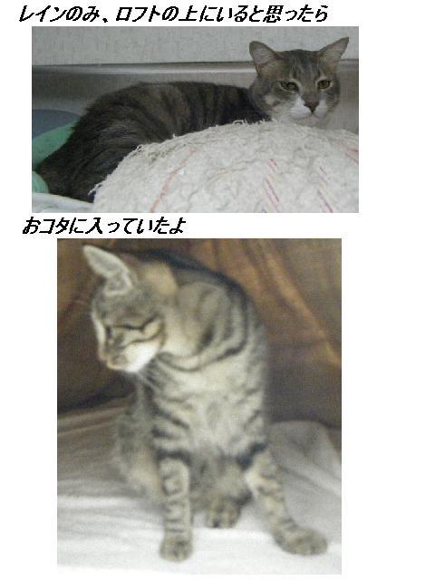 b0112380_1935872.jpg