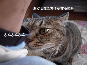 c0139488_027486.jpg