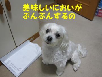 f0145192_1683737.jpg