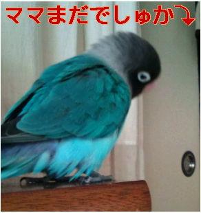 f0126418_15145193.jpg