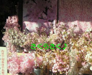 d0043935_875094.jpg