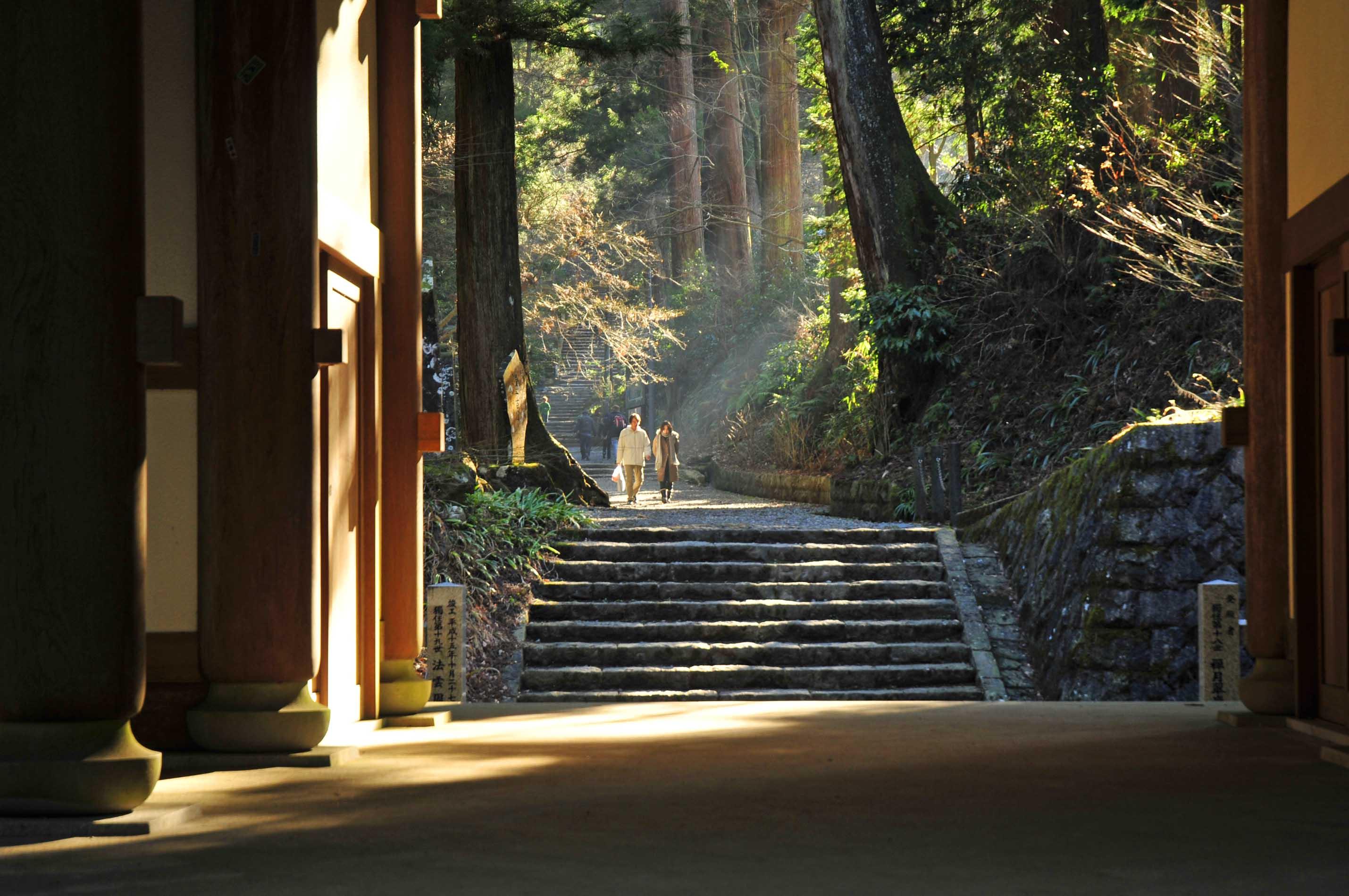 森の中にそびえたつ門_e0157647_2035581.jpg