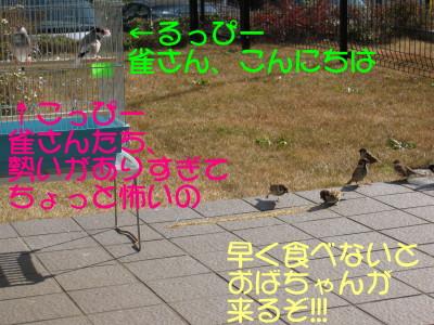 b0158061_217763.jpg