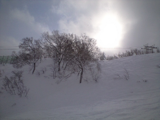 1月26日  札幌国際スキー場 ☆ 天気良い_c0151965_21303150.jpg