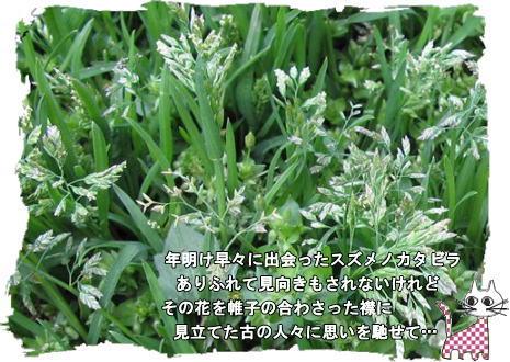 f0137096_22253074.jpg