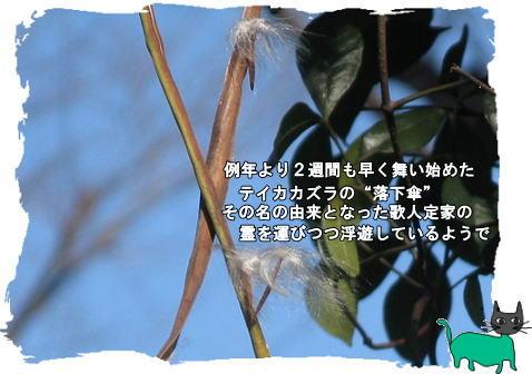 f0137096_22261544.jpg