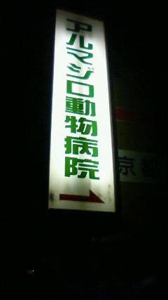 b0046398_022234.jpg
