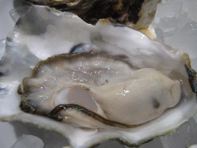 ガンボ&オイスター・バーの「生牡蠣食べ放題」¥3,980@川崎_b0042308_13172014.jpg