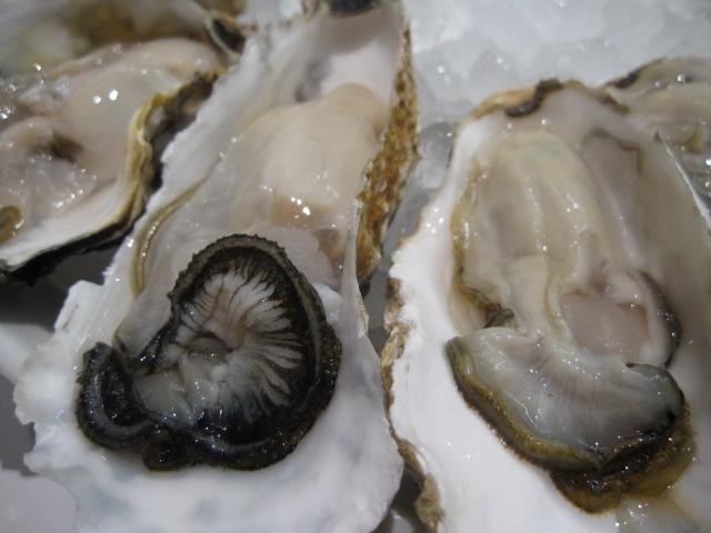 ガンボ&オイスター・バーの「生牡蠣食べ放題」¥3,980@川崎_b0042308_13173834.jpg