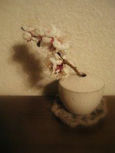 春の香り。_b0157216_23244830.jpg