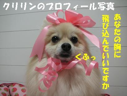 c0179136_224287.jpg