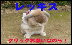 c0151439_110339.jpg