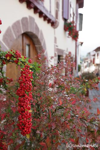 バスク地方、人気上昇中!_c0024345_0392582.jpg