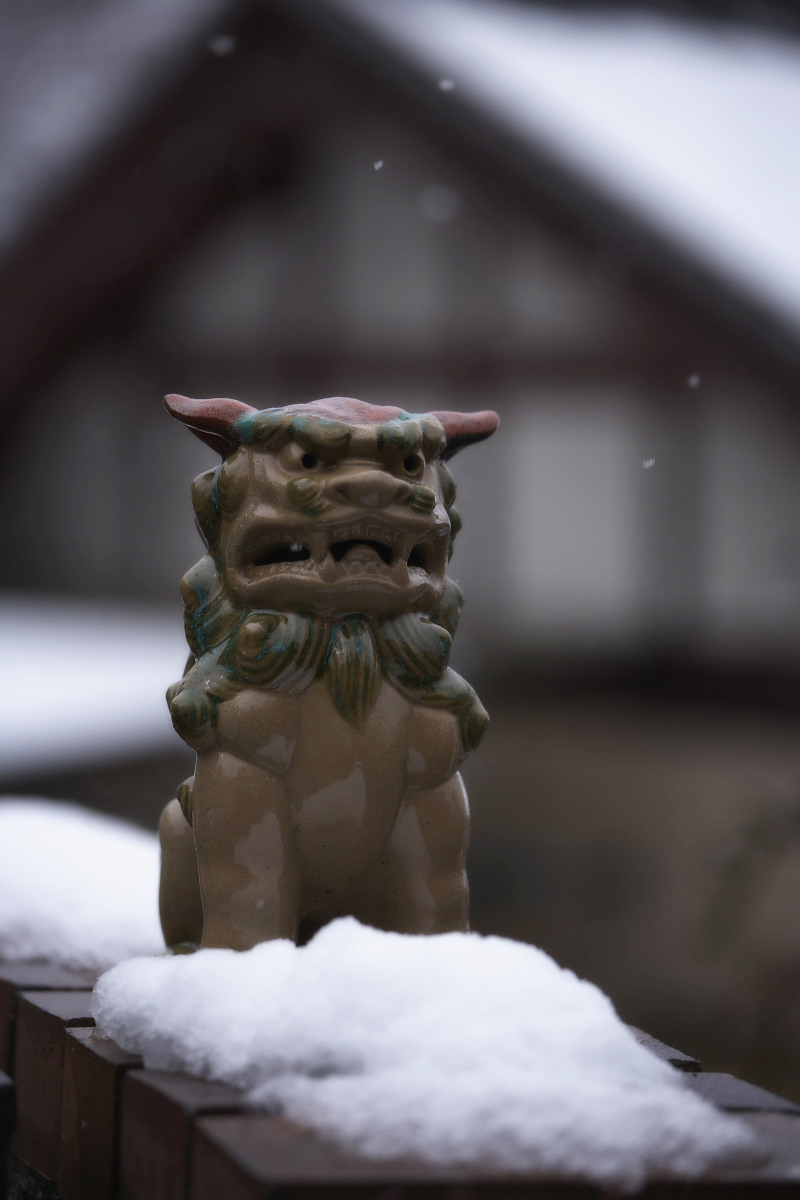 大原  雪景色_f0021869_23523623.jpg