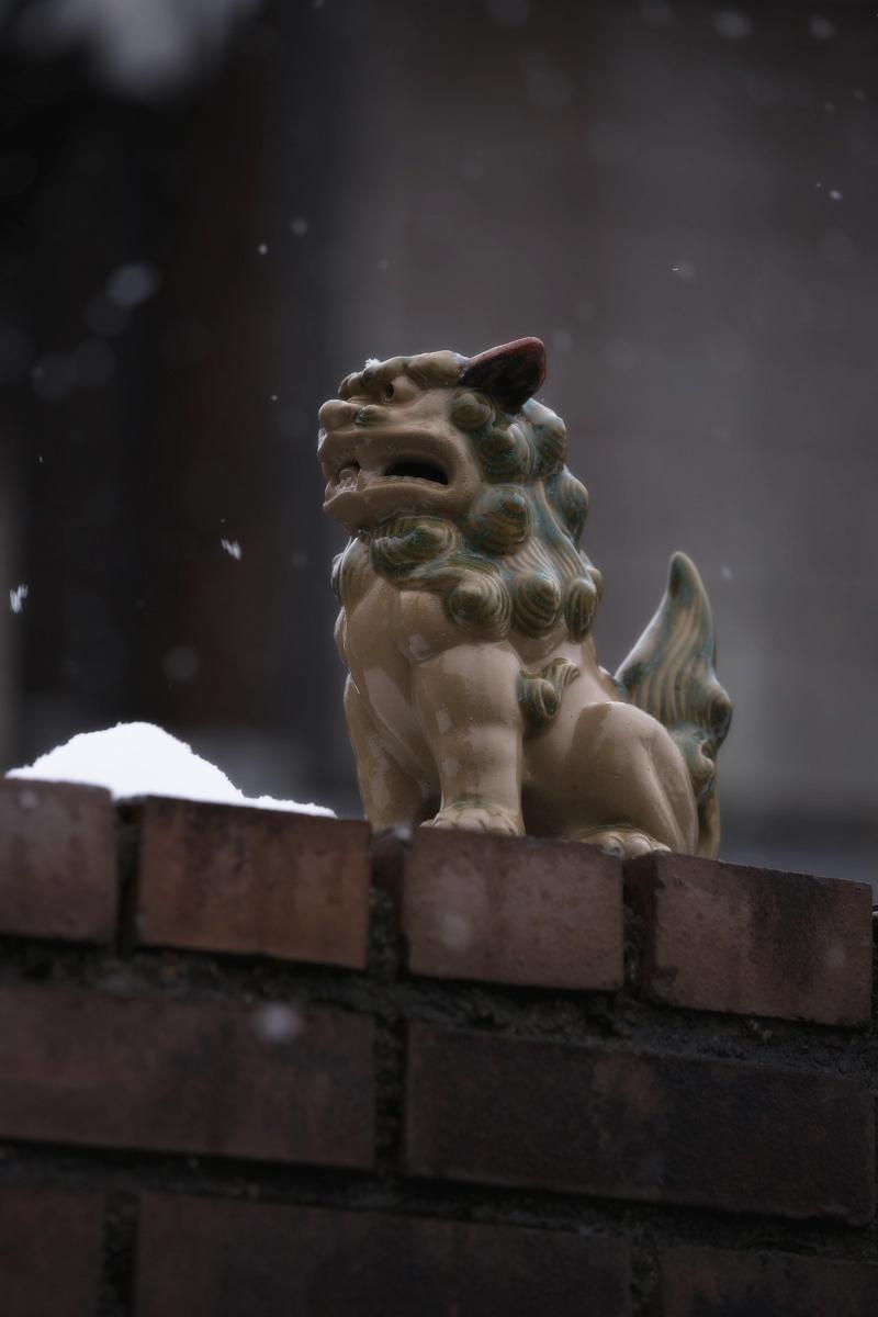 大原  雪景色_f0021869_2352535.jpg