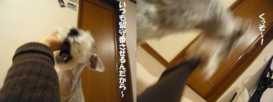 f0157373_21491810.jpg