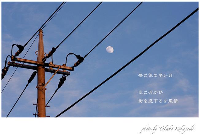 f0139890_10542666.jpg