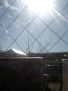 No.505 1月27日(火):「エネルギーの力」は信じます!_b0113993_0565412.jpg