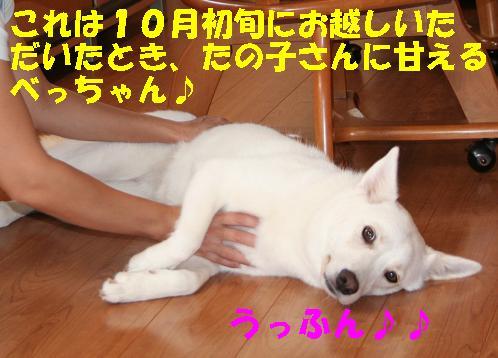 f0121712_18141634.jpg