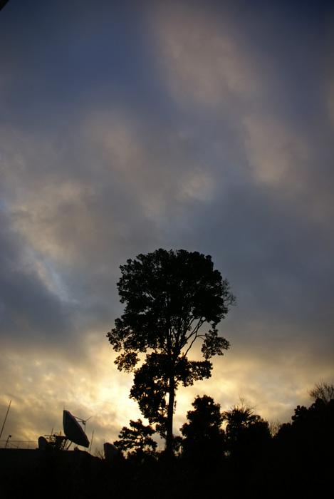 雲の下の朝陽_e0077521_20525322.jpg